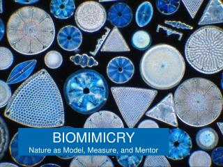 BIOMIMICRY Nature as Model, Measure, and Mentor