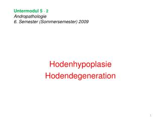 Untermodul 5  -  2 Andropathologie 6. Semester (Sommersemester) 2009