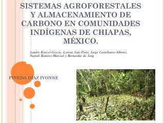 SISTEMAS AGROFORESTALES Y ALMACENAMIENTO DE CARBONO EN COMUNIDADES IND�GENAS DE CHIAPAS, M�XICO.
