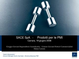 SACE SpA   -      Prodotti per le PMI Carrara, 19 giugno 2008