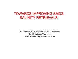 TOWARDS IMPROVING SMOS SALINITY RETRIEVALS