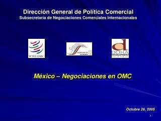 Dirección General de Política Comercial Subsecretaría de Negociaciones Comerciales Internacionales