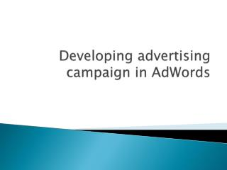 Developing �advertising campaign in  AdWords