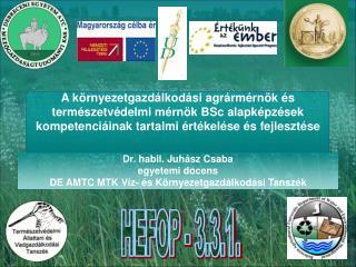 Dr. habil. Juhász Csaba egyetemi docens DE AMTC MTK Víz- és Környezetgazdálkodási Tanszék