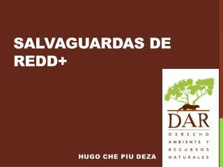 SALVAGUARDAS DE REDD+