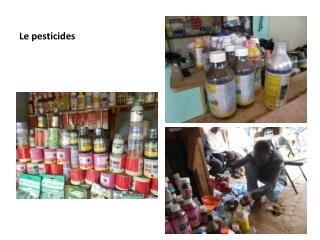 Le pesticides