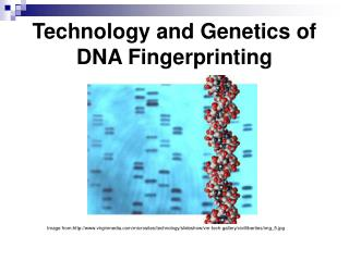 Technology and Genetics of DNA Fingerprinting