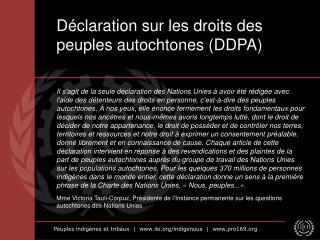 Déclaration sur les droits des peuples autochtones (DDPA)