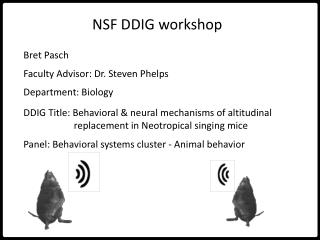NSF DDIG workshop