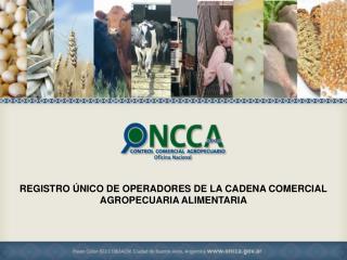 REGISTRO ÚNICO DE OPERADORES DE LA CADENA COMERCIAL  AGROPECUARIA ALIMENTARIA
