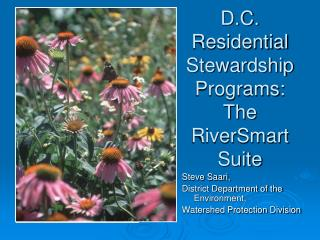 D.C. Residential Stewardship Programs: The RiverSmart Suite