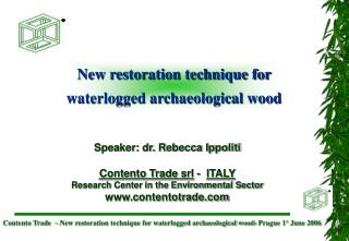 New restoration technique for waterlogged archaeological wood
