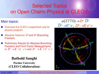Selected Topics  on Open Charm Physics at CLEO-c