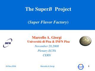 The Super B   Project ( Super Flavor Factory )