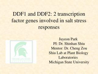 DDF1 and DDF2: 2 transcription factor genes involved in salt stress responses