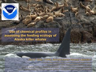 Use of chemical profiles in assessing the feeding ecology of Alaska killer whales