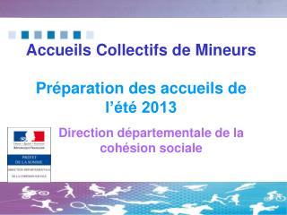 Accueils Collectifs de Mineurs Préparation des accueils de l'été 2013