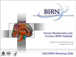 Human Morphometry and Function BIRN Testbeds