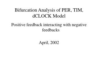 Bifurcation Analysis of PER, TIM, dCLOCK Model