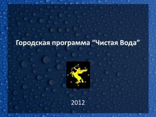 """Городская программа """"Чистая Вода"""""""
