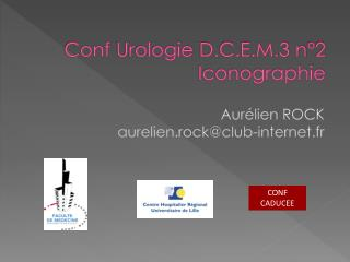 Conf  Urologie  D.C.E.M.3 n°2 Iconographie