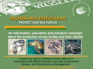 PROTEHÁ NOS TURTUGANAN PROTECT OUR SEA TURTLES