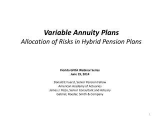 Variable Annuity Plans Allocation of Risks in Hybrid Pension Plans