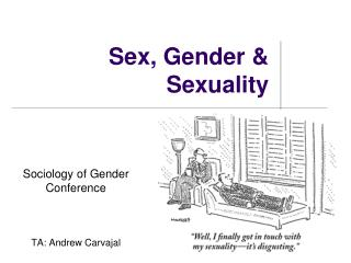 Sex, Gender & Sexuality
