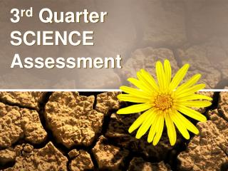 3 rd  Quarter SCIENCE Assessment