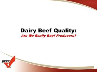 Dairy Beef Quality: Are We Really Beef Producers?