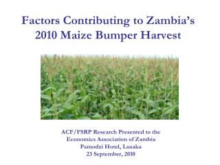 Factors Contributing to Zambia s 2010 Maize Bumper Harvest