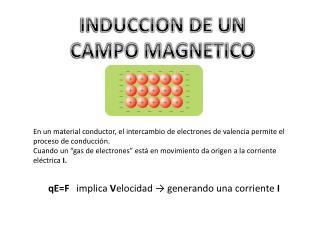 INDUCCION DE UN  CAMPO MAGNETICO