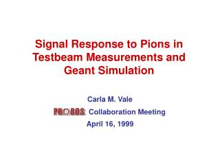 Signal Response to Pions in Testbeam Measurements and Geant Simulation