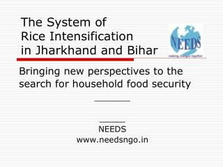 The System of  Rice Intensification in Jharkhand and Bihar