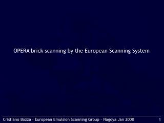 OPERA brick scanning by the European Scanning System
