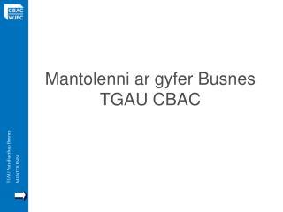 Mantolenni ar gyfer Busnes TGAU CBAC