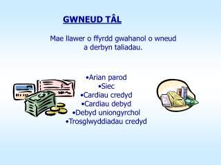 Mae llawer o ffyrdd gwahanol o wneud  a derbyn taliadau.