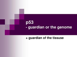 p53  - guardian or the genome