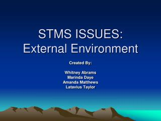 STMS ISSUES: External Environment