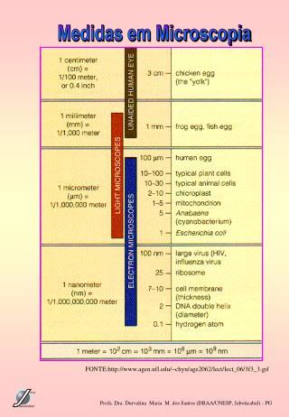 Medidas em Microscopia