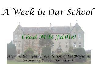 A Week in Our School