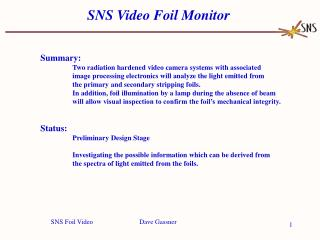 SNS Video Foil Monitor