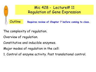 Mic 428 -  Lecture# 11 Regulation of Gene Expression
