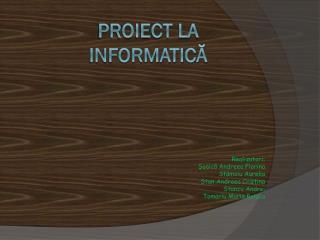 Proiect la informatică