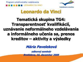 Mária Paveleková odborný seminár   Bratislava, 16. december 2008