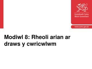 Modiwl 8: Rheoli arian ar draws y cwricwlwm