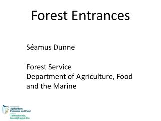 Forest Entrances