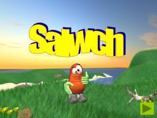 Salwch
