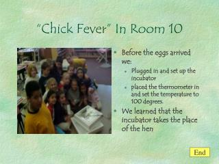 Chick Fever  In Room 10