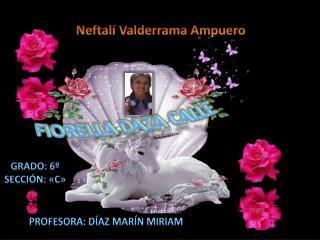 Neftalí Valderrama Ampuero